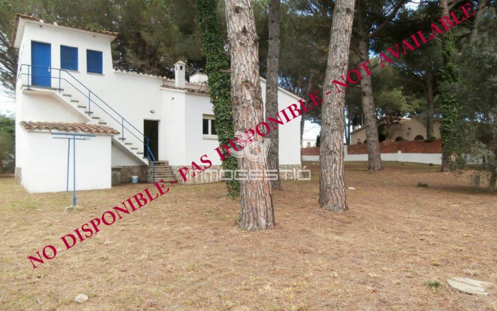 House with huge block of land 1144 sqm